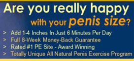peniss 272x125 - Penis Advantage Review Download : Does it Really Work or Scam?