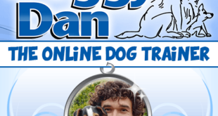 Doggy Dans Online Dog Trainer 310x165 - Doggy Dans The Online Dog Trainer Reviews! Must Read Before Purchasing