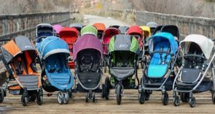 best strollers 310x165 - The Best Strollers Reviews