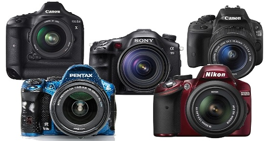 The Best DSLR Camera For Beginners Reviews
